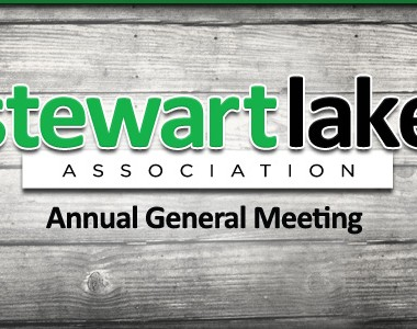 Annual General Meeting – 2020